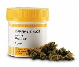 Bedrocan medicinale cannabis